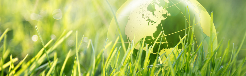 An illustration of a green globe nestled among healthy grass.